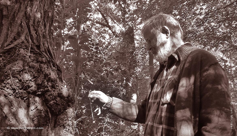 Bruno Fremont,apiculteur naturel