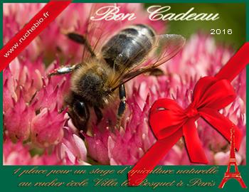 Bon de cadeau stage apiculture paris