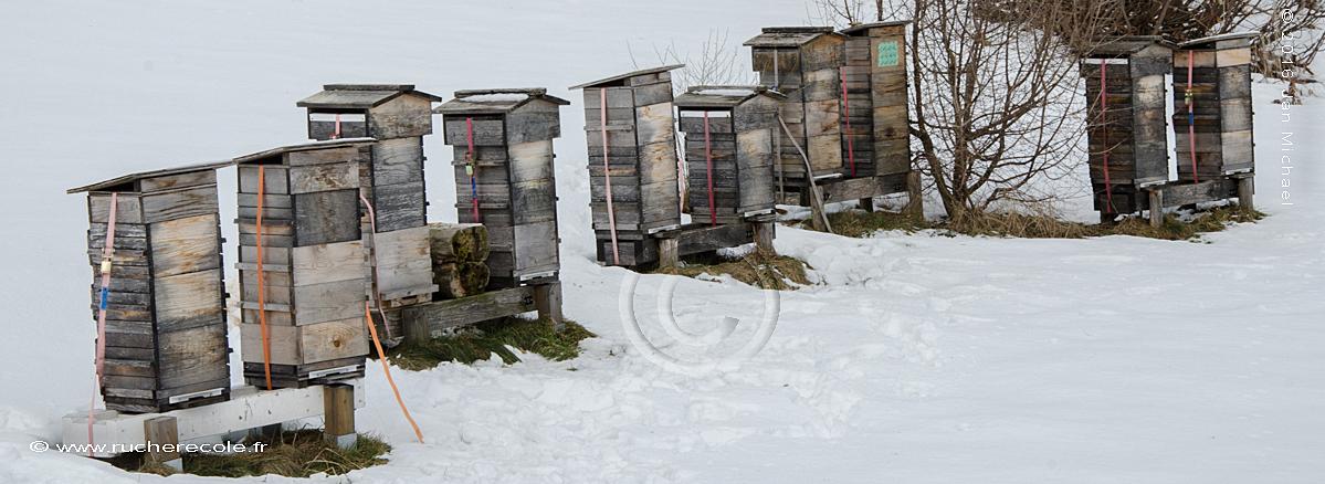 rucher Warré en hiver