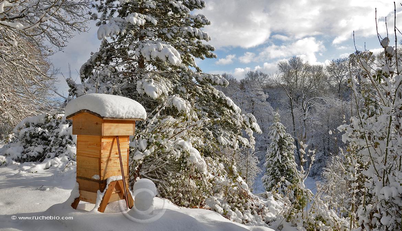 ruche warré en hiver
