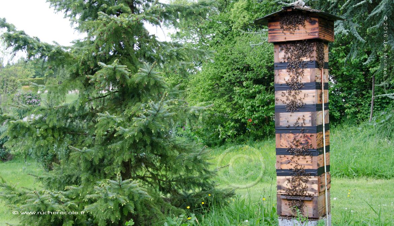 notre ruche japonaise traditionnelle rucher ecole villa. Black Bedroom Furniture Sets. Home Design Ideas