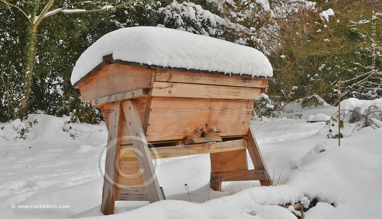 notre ruche Kényane en hiver