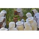 Normandie (14) Stage apiculture naturelle en ruche Warré et la ruche horizontale