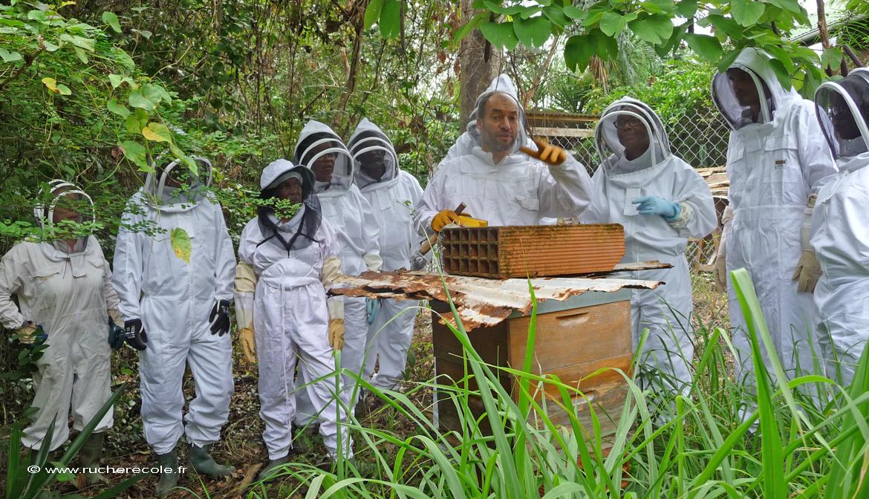 rucher école Villa le Bosquet a la Martinique
