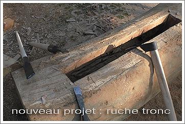 ruche tronc -rucher école Villa le Bosquet
