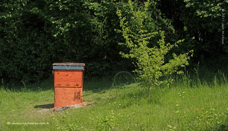 ruche Mellifera -rucher école Villa le Bosquet