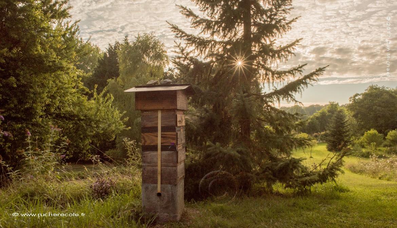 notre ruche Warré japonaise - sans barettes sans cadres sans cire gaufrée