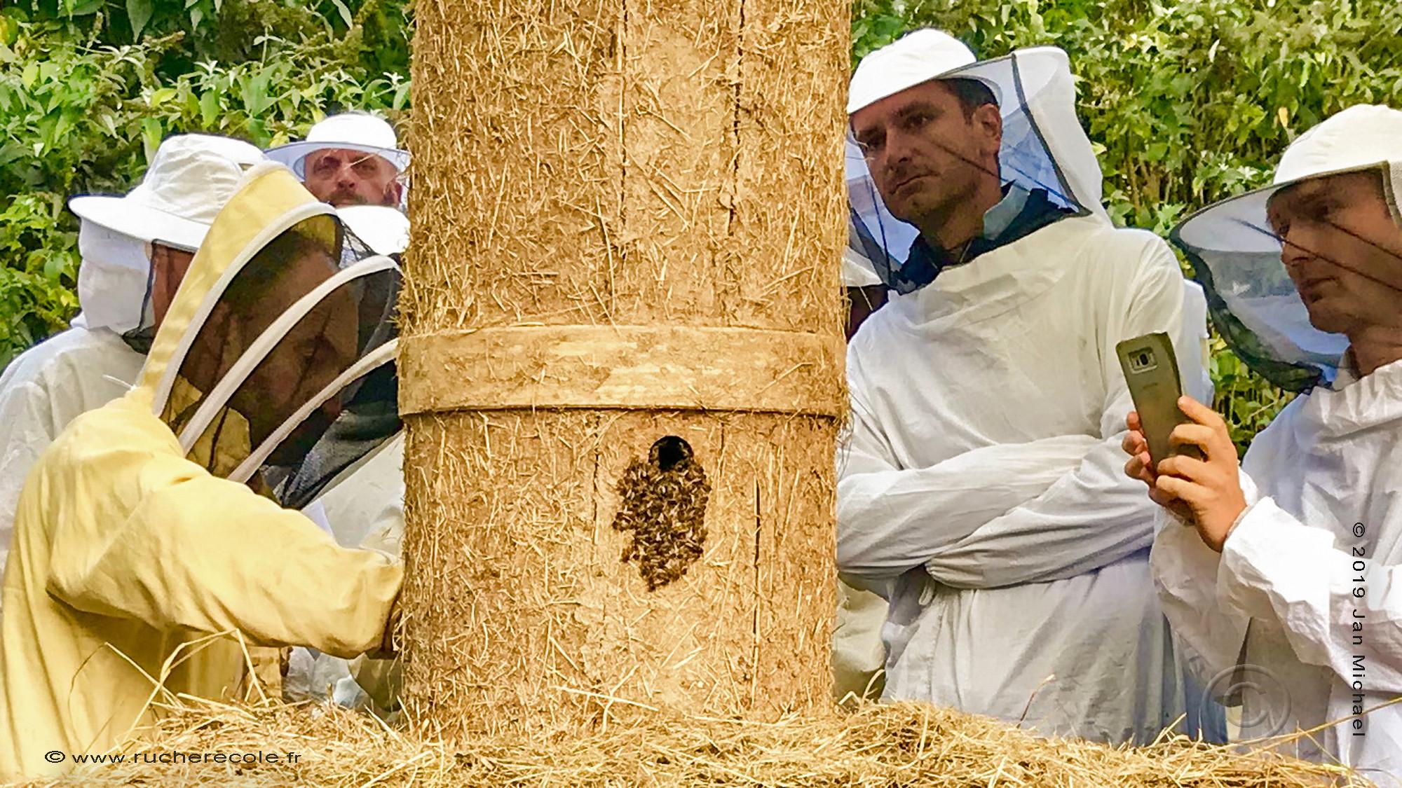 C'est en bonne compagnie que Jan, fondateur du rucher-école, s'est initié à la fabrication de ruches alternativ...