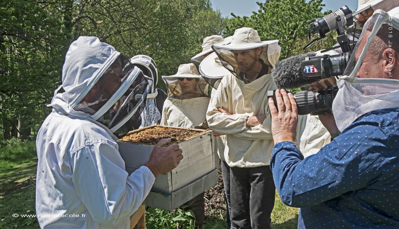 Reportage TF1 sure notre rucher école Villa le Bosquet