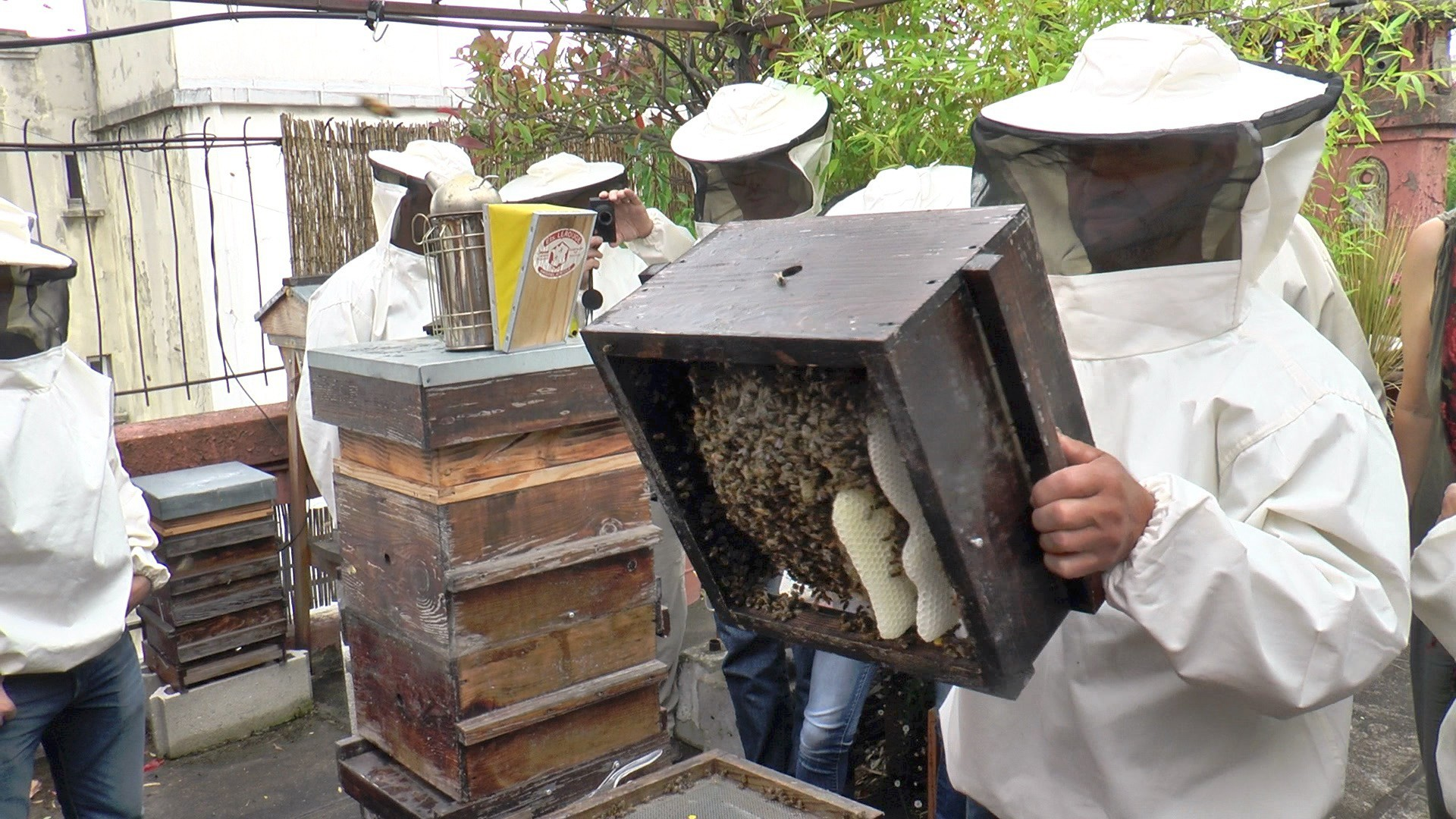 Notre stage d'apiculture naturelle à Paris en Centre Ville 10 ém Arr.